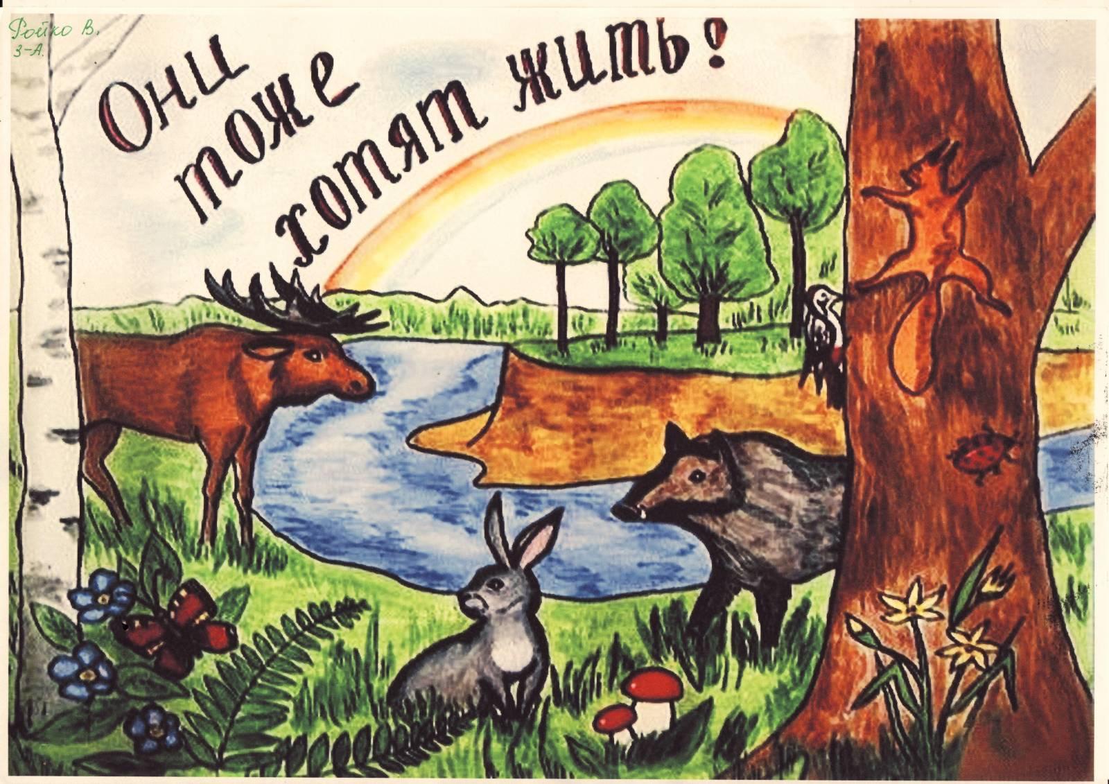 Урок природы. Окружающая среда животных